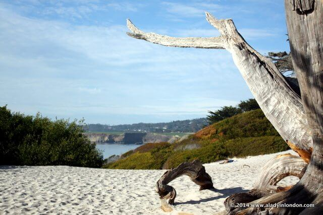 Beach in Carmel, California