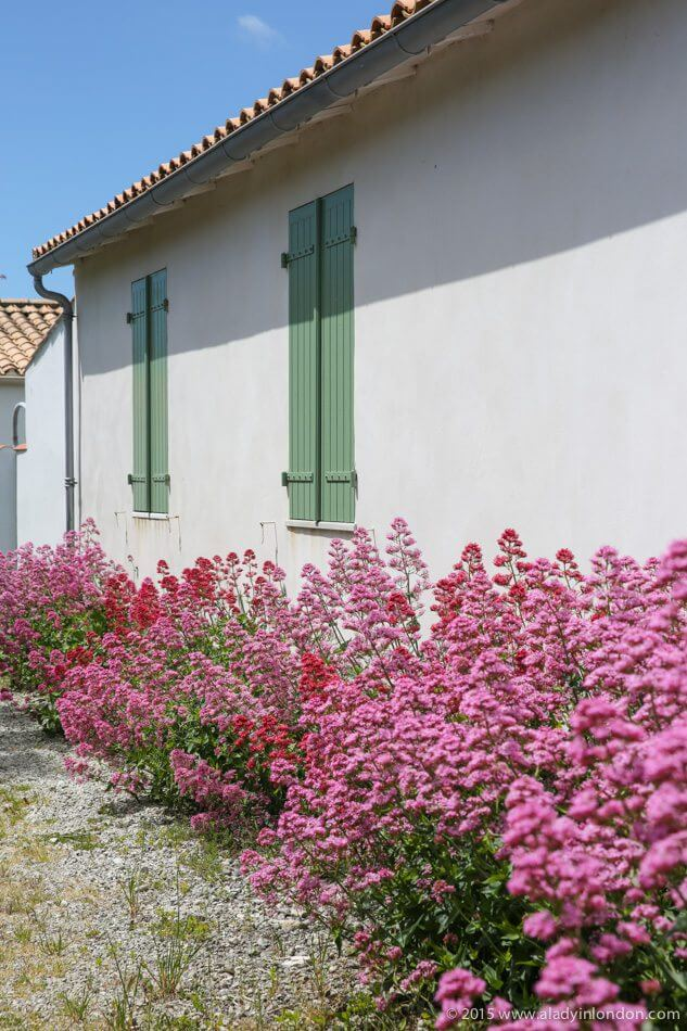 House on the Ile de Re, France