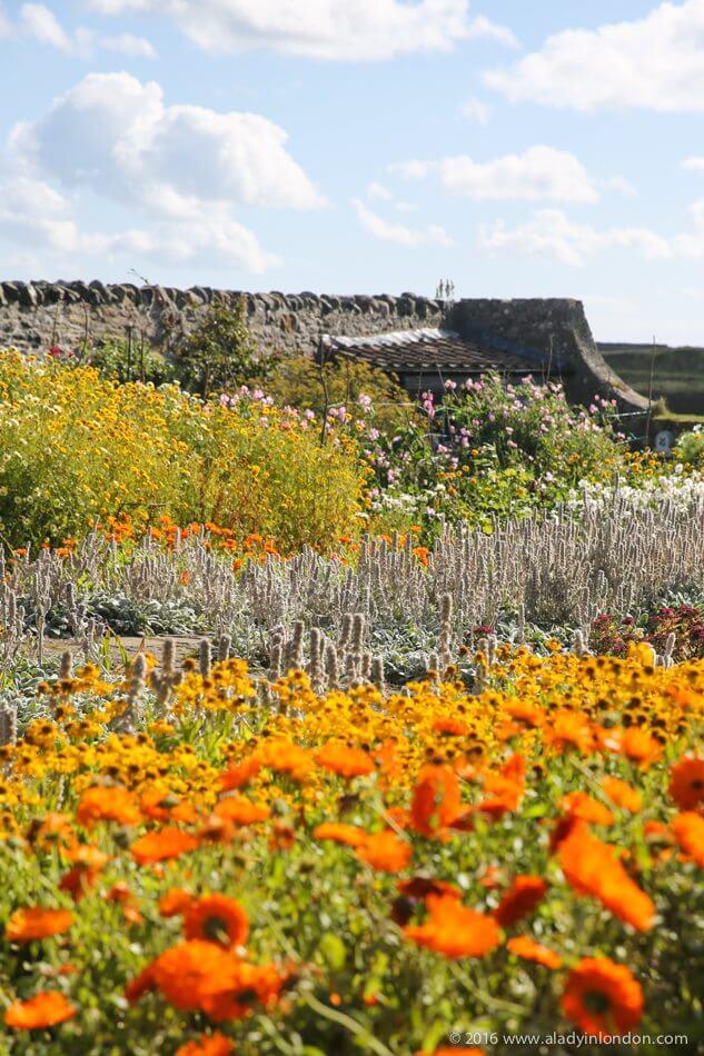 حديقة جيرترود جيكل المسورة ، قلعة ليندزفارن