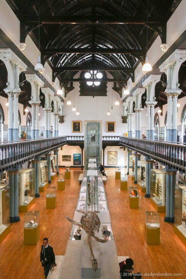 Hunterian Museum, Glasgow