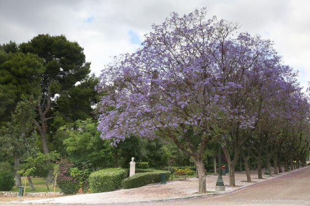 National Gardens, Athens