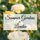 Best Summer Gardens in London