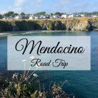 Mendocino Road Trip