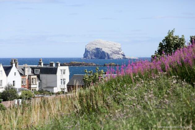 how to get to north berwick from edinburgh
