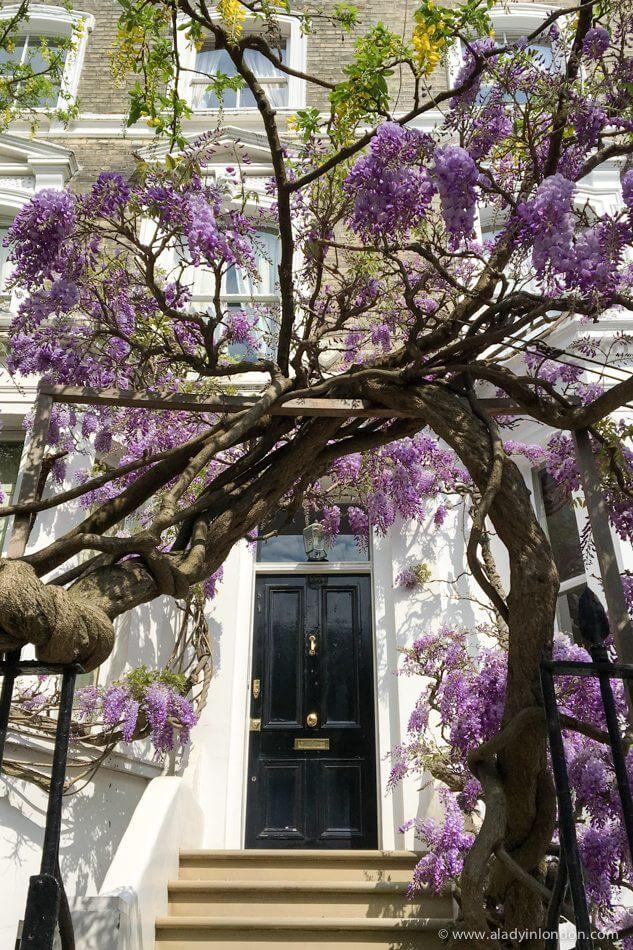 Door in Kensington, London