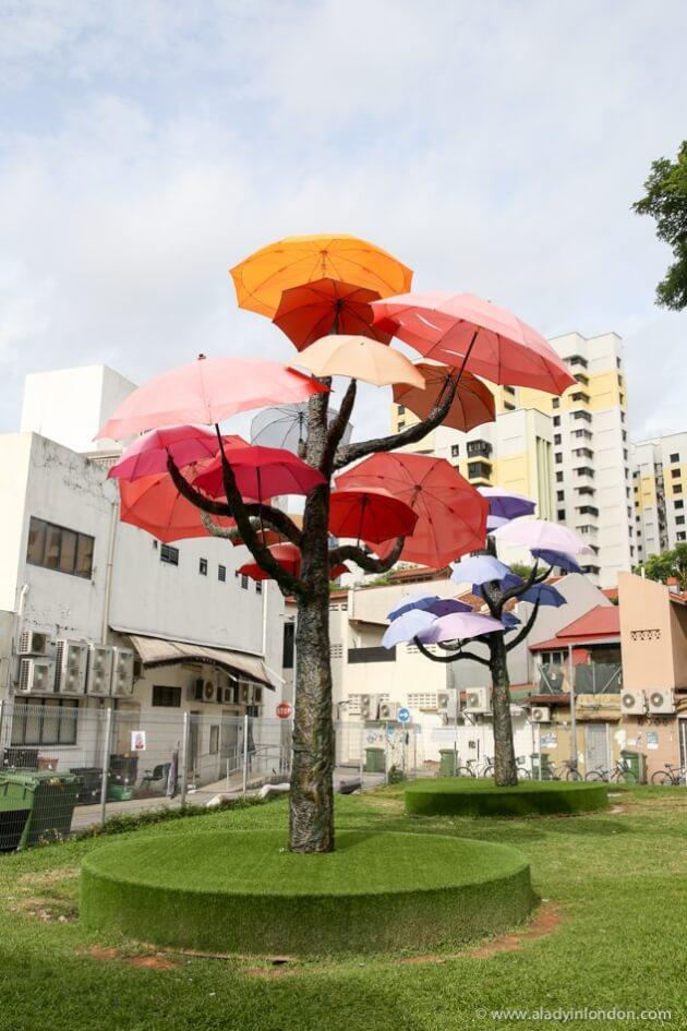 Umbrella Trees, Singapore