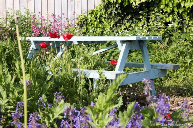 Garden, Christchurch