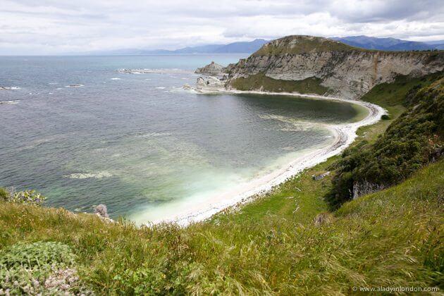 Beach, Kaikoura, New Zealand