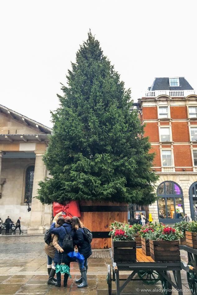 Christmas Tree, Covent Garden, London