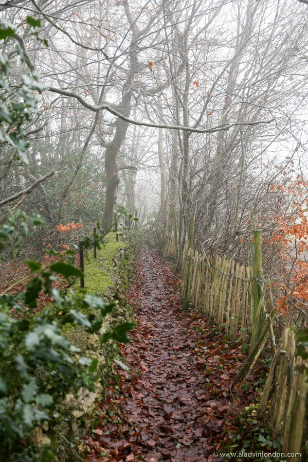 Path in the Cotswolds