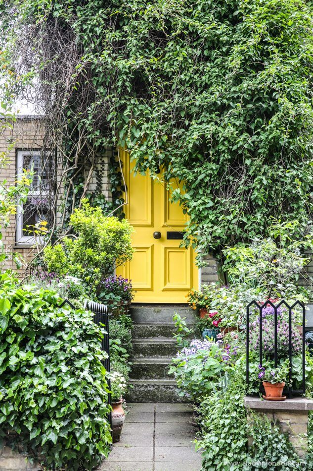 Door, Hampstead, London