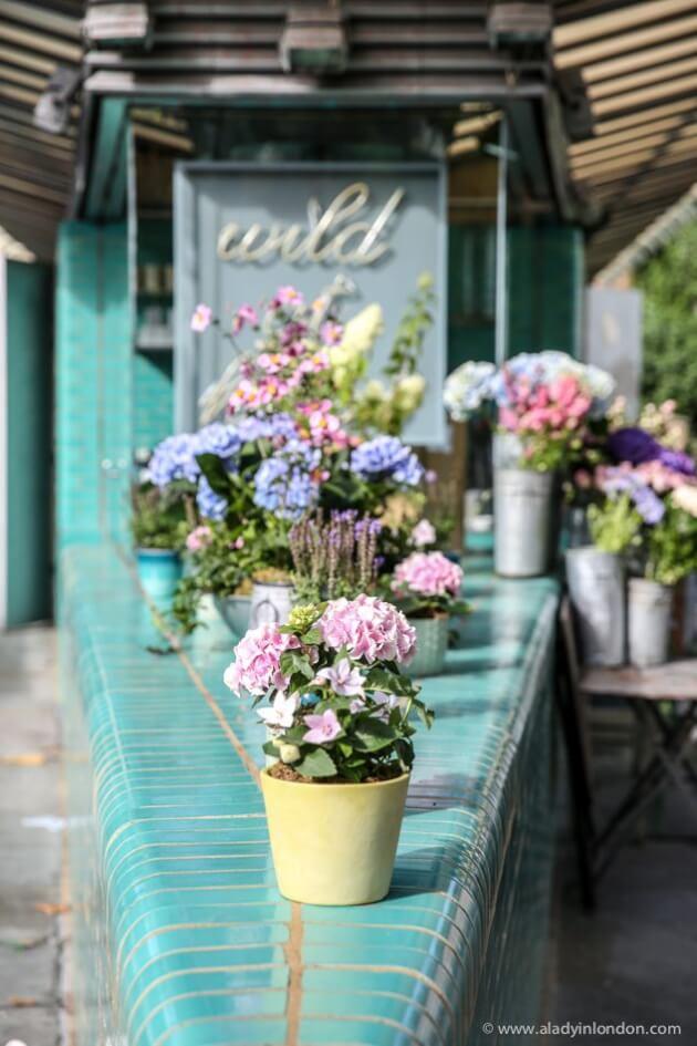 Flower Shop, Notting Hill