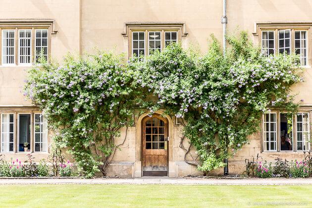 Sidney Sussex, Cambridge