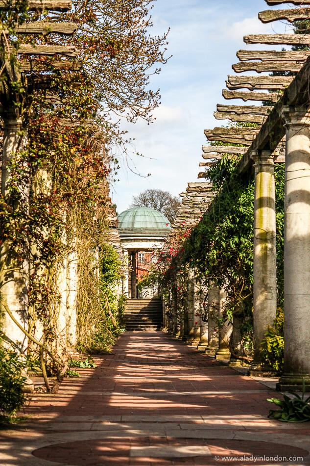 Pergola Garden in Hampstead