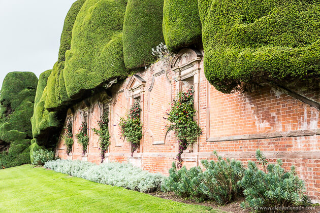 Roses In Garden: 15 Spring Gardens You Have To Visit In Britain