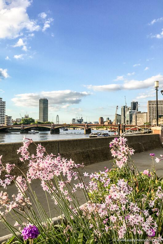 Thames Path walk in Vauxhall, London